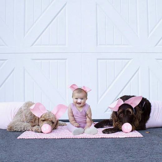3 little pigs costume